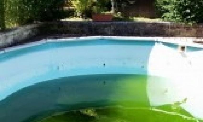 Acqua verde nella piscina appena riempita