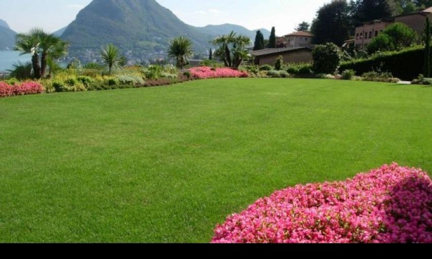 Dove installare la piscina nel giardino di casa?